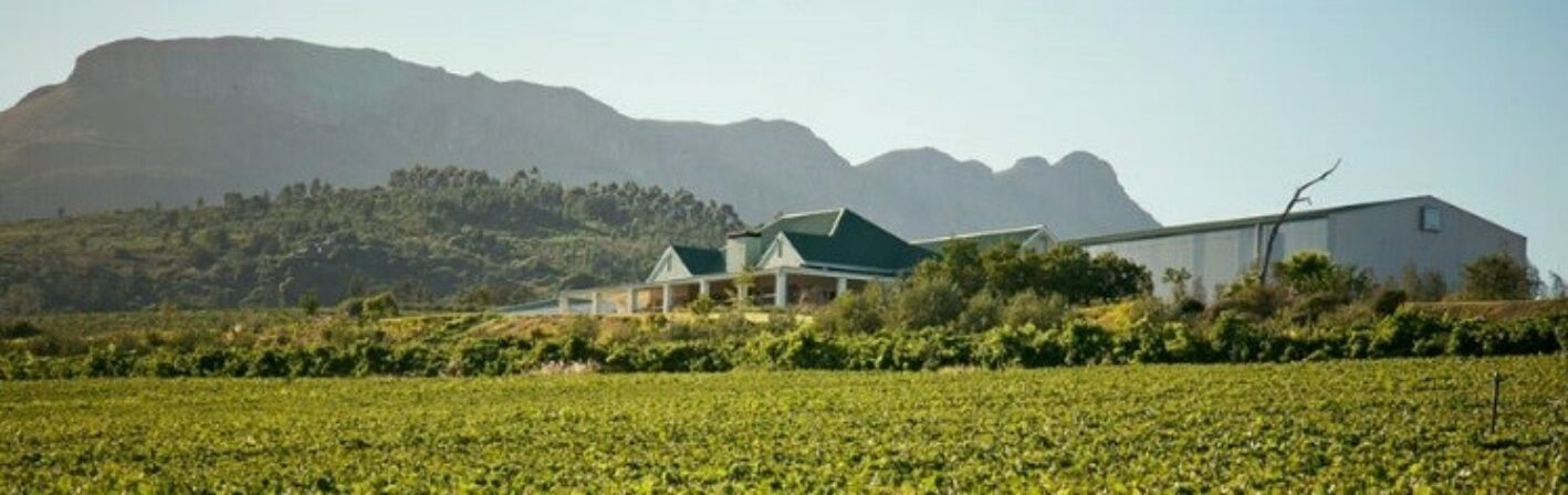 Imbuko winery 1