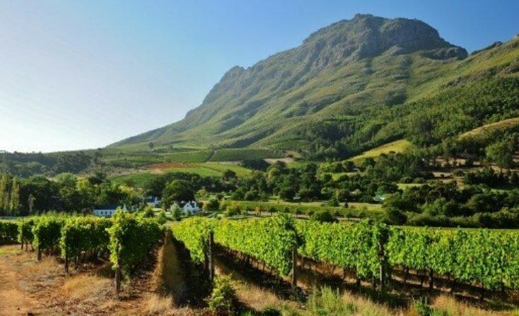 Imbuko winery