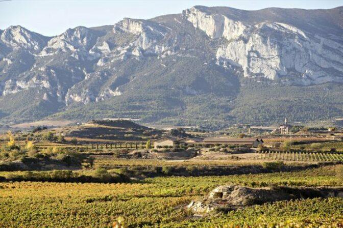 Sierra cantabria el puntido winery