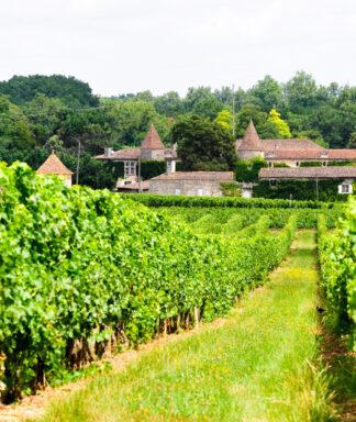 Lurton chateau 1